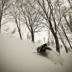 Hakuba-Powder-SKiing