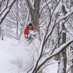 Hakuba-Tree-Jump