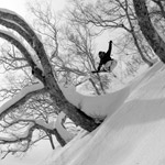 Hakuba-Tree-Skiing