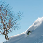 Hakuba-backcountry-skiing---Goryu