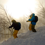 Hakuba-tree-skiing-(2)