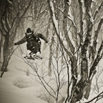Skiing-Hakuba-Cortina-Trees
