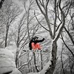 Snowboarding-Hakuba-Trees