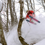 Tsugaike-Tree-skiing