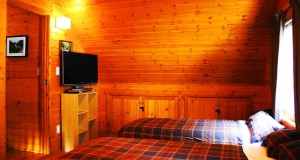 Hakuba Big Bear Chalet Western Twin Room